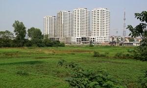 Hà Nội: Chính phủ chỉ đạo xử lý dứt điểm vụ giao 200 lô đất không qua đấu giá