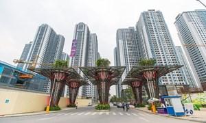 TNG Holdings bị bác các dự án đầu tư ở Cần Thơ