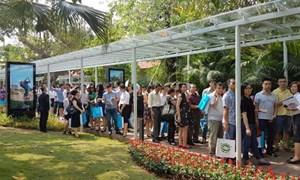 Bất động sản Việt Nam tăng giá vì cái gì?