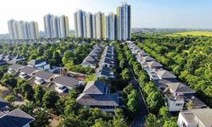 Đất nước đang bỏ phí 3.000 tỷ Usd nhìn từ vụ Ecopark Văn Giang