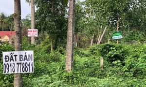 Phú Quốc: Hậu quả từ cơn sốt đất ảo