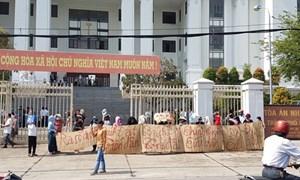 Vụ 1.000 người dân mua đất không có sổ: Tòa bác đơn kiện của Bách Đạt An và yêu cầu 'trả đất' cho dân
