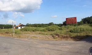 Tỉnh Long An chỉ đạo công khai thông tin các dự án BĐS