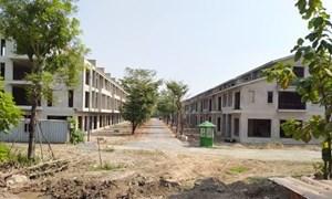 Dự án Sago Palm Garden rao bán hàng trăm căn biệt thự liền kề dù chưa hoàn thiện thủ tục pháp lý