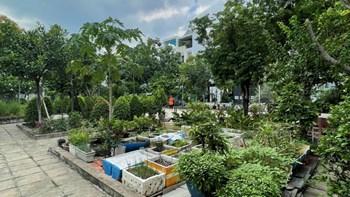 🏬 Lô Góc Biệt Thự 389 Văn Phòng Chính Phủ - Sát Vạn Phúc City - TP Thủ Đức - 5