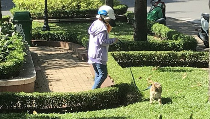 Độ lỳ lợm của người hàng xóm nuôi chó - 1