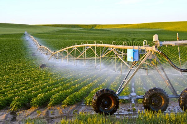 Bất động sản nông nghiệp: Khi người nông dân chán, bỏ công cụ lao động (bài 1) - 1