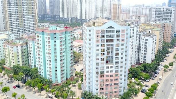 Đầu tư căn hộ cho thuê: Gà đẻ trái đắng - 1