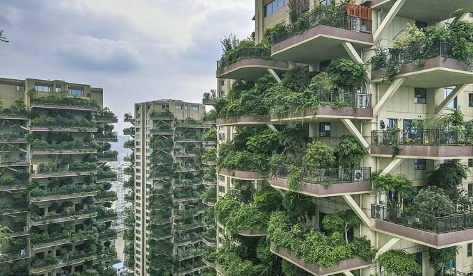 Đầu tư BĐS, chớ có thấy cây mà quên rừng! - 1