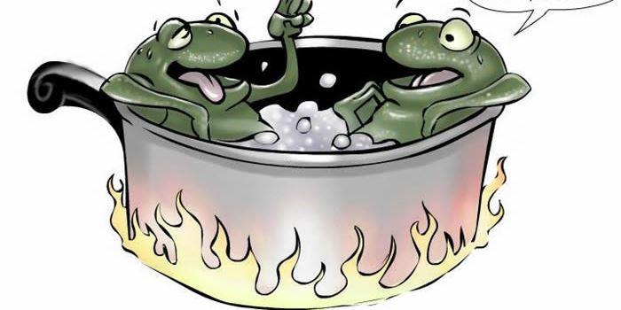Thị trường tài chính - BĐS và bài học luộc ếch  - 1