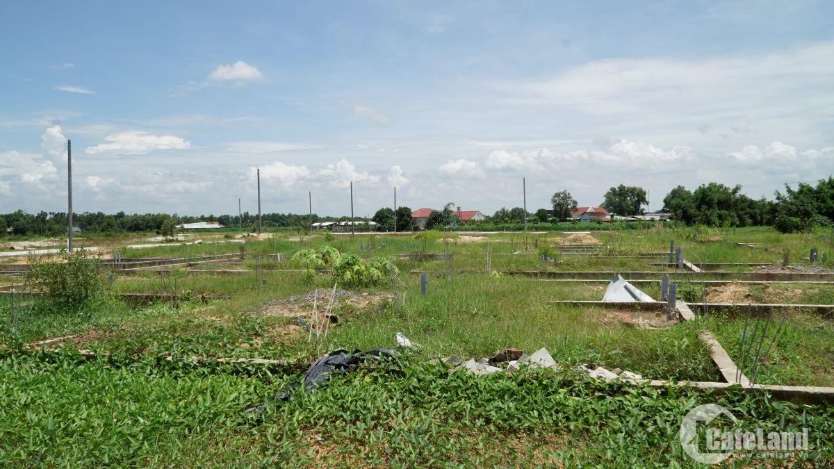Đặt cọc mua nhà đất, coi chừng mất trắng - 1
