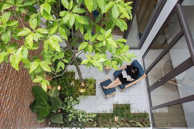 Khu vườn nhỏ không chỉ là nơi tạo ra không gian đầy nắng và gió cho căn nhà mà còn là nơi để đọc sách và thư giãn cho cả gia đình.