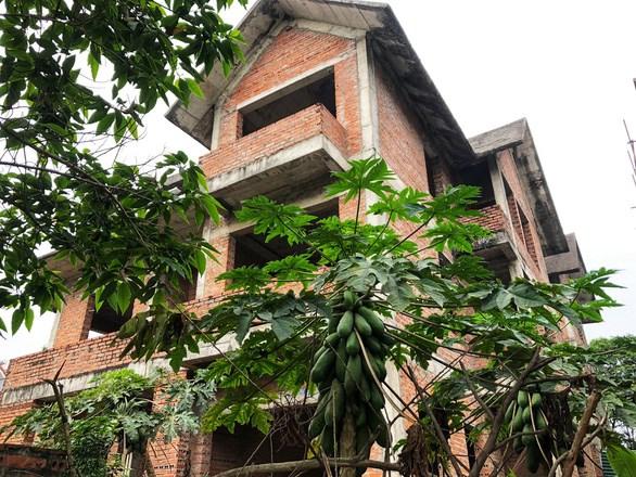 Biệt thự liền kề bỏ hoang ở khu đô thị mới Cầu Bươu (huyện Thanh Trì, Hà Nội) - Ảnh: Q. TH.