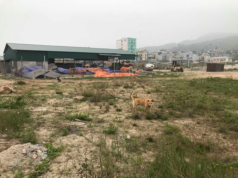 Có tới 65/131 dự ánchưa giao đất tại Vân Đồn. (ảnh Trần Kháng)