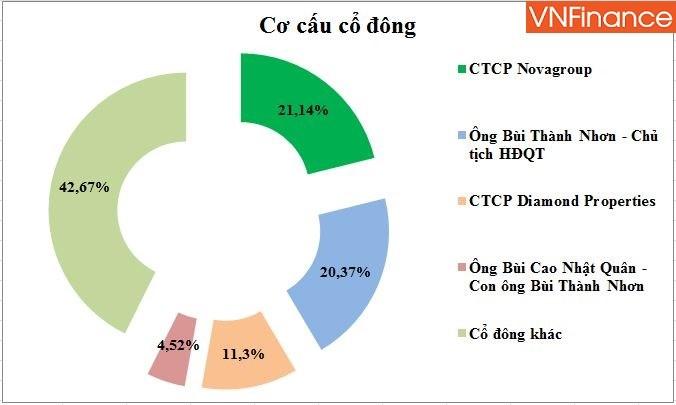 Cơ cấu cổ đông tính tới ngày 26/3/2019 (Nguồn: HK tổng hợp)