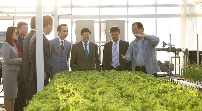 Tập đoàn FLC đầu tưDự án nông nghiệp công nghệ cao tại Hà Tĩnh với quy mô 210,3ha.