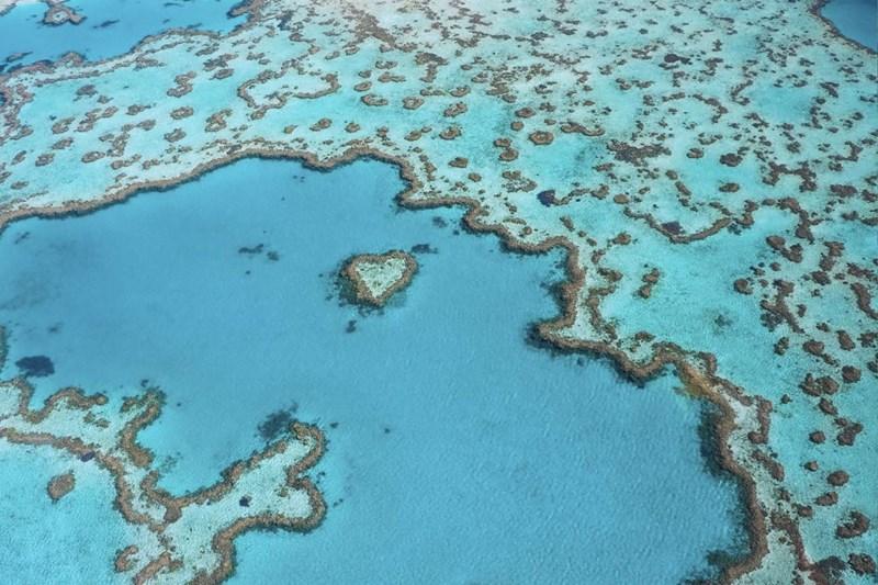 Rạn san hô dài nhất - Great Barrier Ngoài khơi biển Queenland, Úc, 2027km