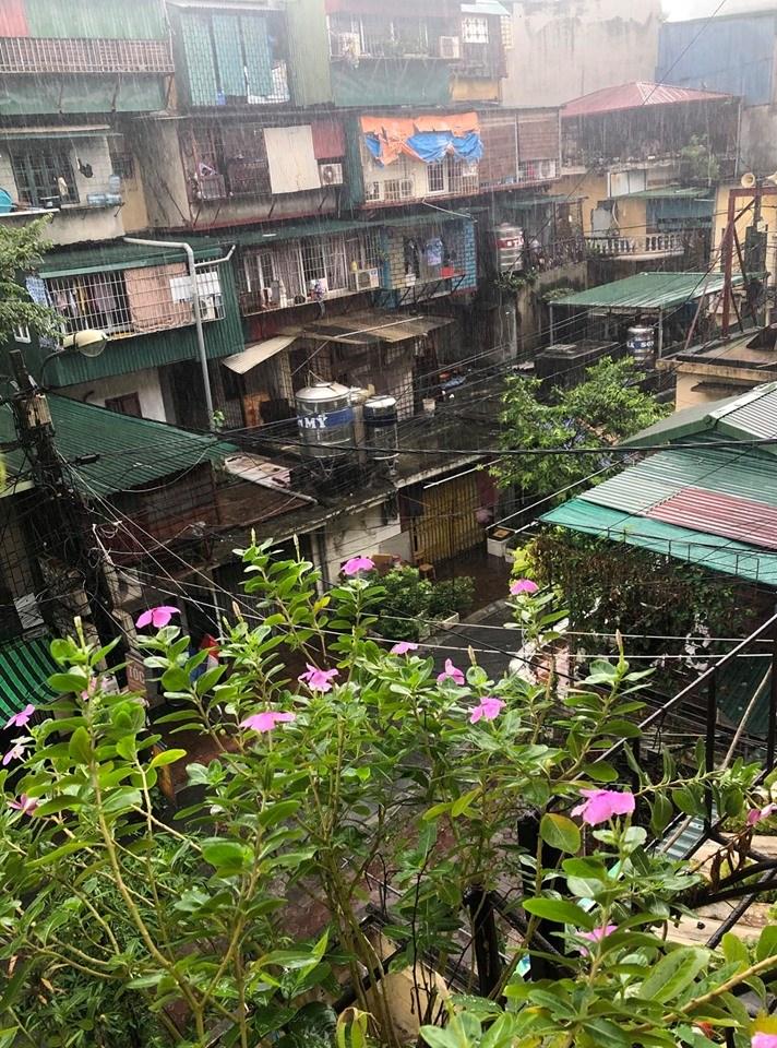 Cần lưu ý đến chất lượng công trình của các bất động sản cũ.