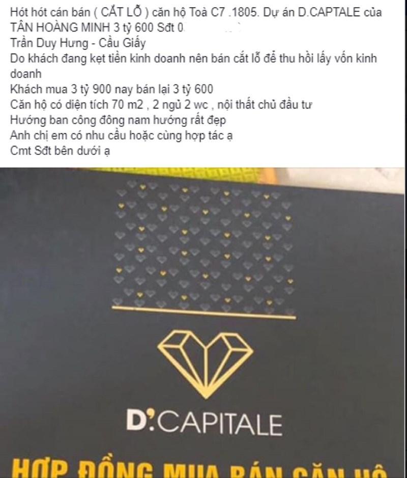 Rất nhiều những tin rao bán cắt lỗ như thế này tại D'Capitale
