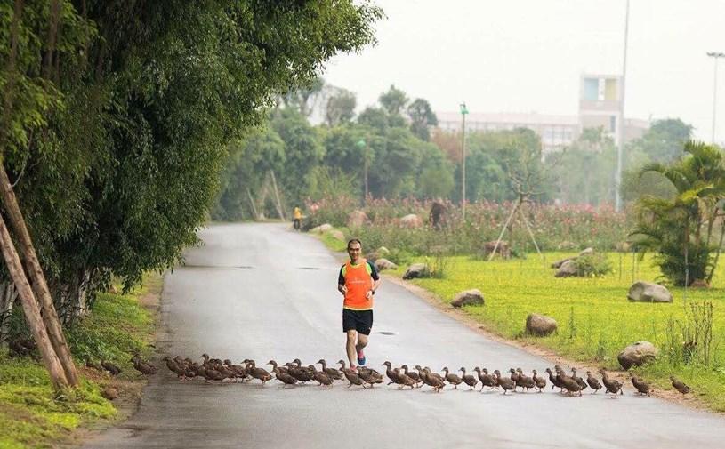 """Ecopark Marathon 2021 - Ngắm cung đường chạy giữa thiên nhiên """"siêu chất"""" trước giờ G - Ảnh 4"""