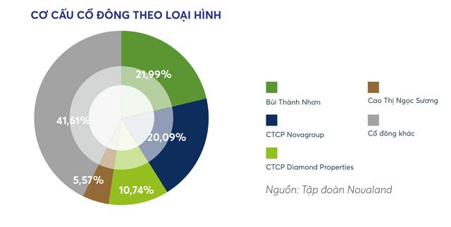Novaland sẽ huy động vốn 1 - 2 tỷ USD để M&A thêm 10.000 ha quỹ đất - Ảnh 1