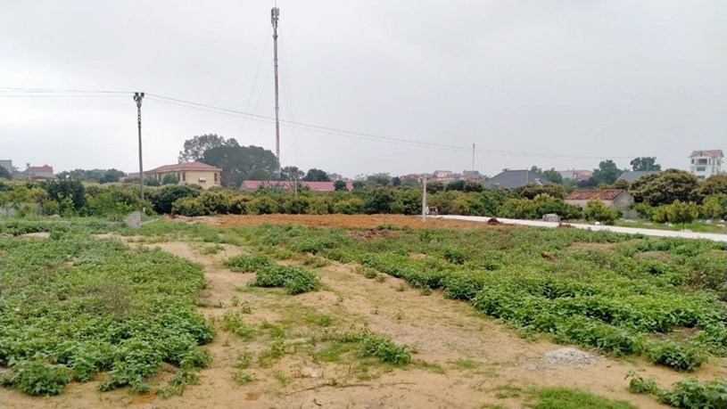 Tại huyện Lạng Giang, tỉnh Bắc Giang, khách hàng đã bỏ cọc hàng loạt lô đất sau đấu giá. Ảnh Báo Bắc Giang