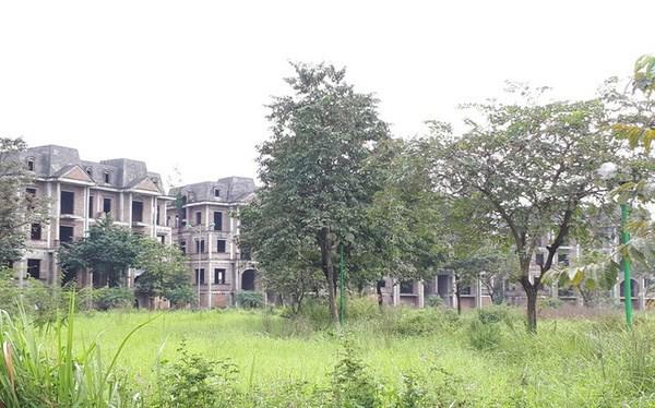 Biệt thự, liền kề bỏ hàng tỷ đồng bỏ hoang gây lãng phí tài nguyên và mất mĩ quan đô thị.