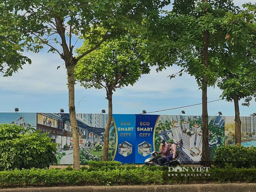 Xung quan lô đất làm dự án Eco Smart City Cổ Linh đang được dựng biển quảng cáo, giới thiệu. (ảnh T.K)