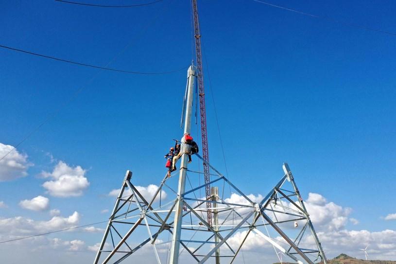 Nhà máy điện gió lớn nhất Việt Nam do Trung Nam Group đầu tư hiện đang có gì? - Ảnh 22