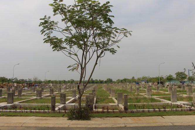 Các nền đất trong dự án