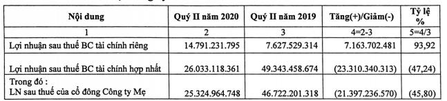 (Nguồn: Báo cáo giải trình Hải Phát Invest)