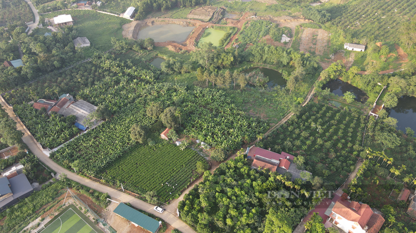 """Nhà đầu tư """"săn"""" mua những lô đất rộng tới hàng nghìn m2 tại các vùng ven trung tâm Thủ đô và tỉnh lân cận. (ảnh Nguyễn Minh)"""