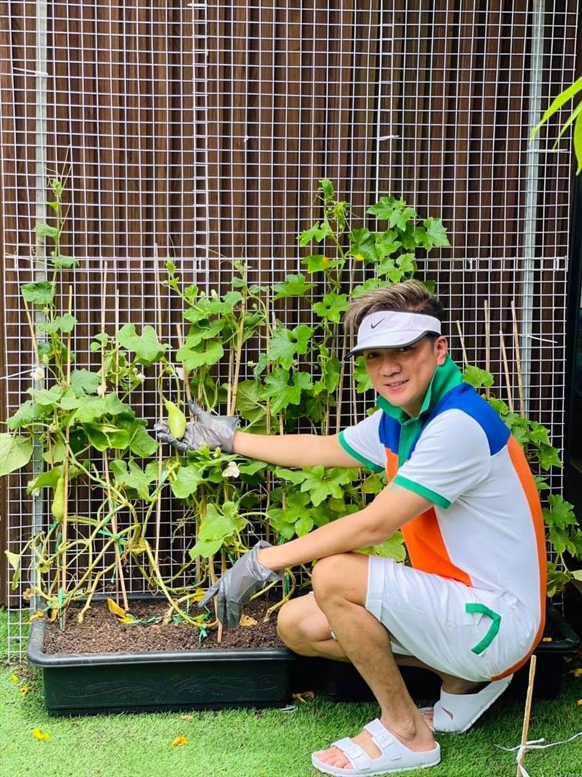 Mới nhất anh chia sẻ về khu vườn rau mà bản thân đã trồng trong thời điểm ở nhà chống dịch.