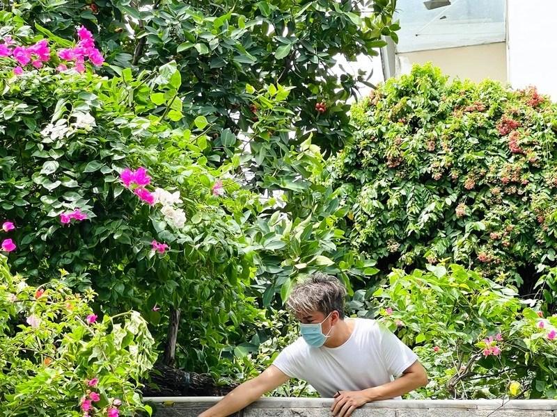 Đàm Vĩnh Hưng cho biết trong thời dịch anh có nhiều thời gian để chăm sóc vườn, trồng nhiều rau củ và cây ăn trái. Hầu hết những cây trồng này đều được anh mua trong những chuyến công tác, du lịch. Đàm Vĩnh Hưng cho biết anh có một quy tắc khi làm vườn là mọi thứ phải tạo cảm giác tự nhiên, nên thơ nhất có thể.