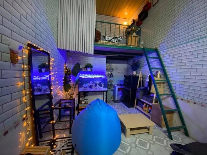 """8 màn cải tạo phòng trọ cho bạn thêm động lực decor, ở nhà thuê nhưng """"xịn"""" chẳng kém nhà riêng - Ảnh 9"""