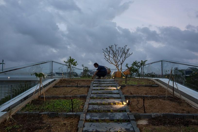 Nhà 2 tầng mở hoàn toàn với cửa kính, cả sân thượng là vườn trồng rau và khu vui chơi - Ảnh 5